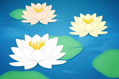Beautiful lotus clipart vector