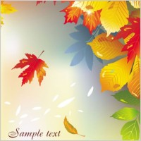 Link toBeautiful maple leaf background 01 vector