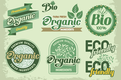 Link toBeautiful organic food label vector