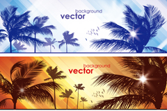 Link toBeautiful palm tree banner vector