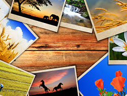 Link toBeautiful photo background 05-hd pictures