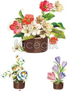 Link toBeautiful potted flowers vector