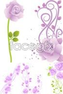 Link toBeautiful purple rose vectors