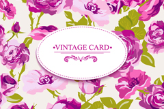 Link toBeautiful purple roses card vector