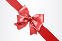 Beautiful red ribbon bow vector