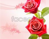 Link toBeautiful rose flower background psd