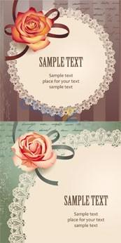 Beautiful roses card vector