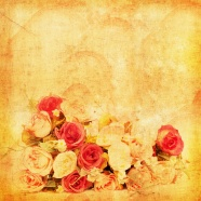 Link toBeautiful roses pictures