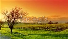 Link topicture the outskirts the on scenery Beautiful
