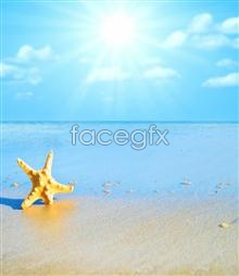 Link toBeautiful seaside landscapes hd pictures