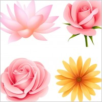 Link toBeautiful small flowers vector 4