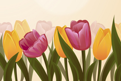 Link toBeautiful tulip flowers vector