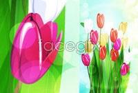 Link toBeautiful tulips vector