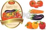 Link toBeautiful vegetable vector