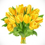 Link toBeautiful yellow tulips vector free