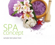 Link toBeauty spa beauty picture material