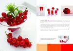 Link toBeauty wellness brochure 2 psd