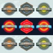 Link toBest retro labels design vector 01