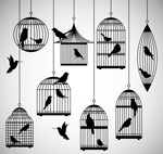 Link toBird cages and bird silhouettes vector