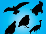 Link toBirds silhouettes vector free