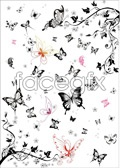 Link toBlack and white butterfly vector