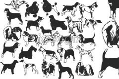 Link toBlack and white dog vector