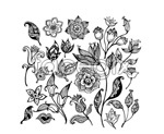Link toBlack and white floral design flowers vector