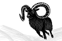 Link toBlack goat vector
