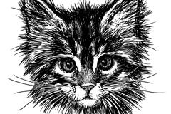 Link toBlack hand-painted cat head vector