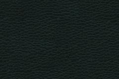 Link toBlack leather grain background vector