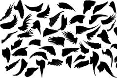 Link toBlack-winged design vector