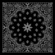 Link toBlack with white bandana patterns design vector 03 free