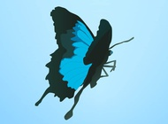 Link toBlue butterfly vector free
