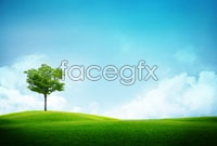Link toBlue grass landscape photography high resolution images