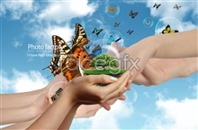 Link toBlue sky meadow butterfly design psd