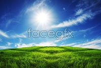 Link toBlue sky meadow high definition pictures