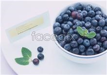Link toBlueberry fruit picture material