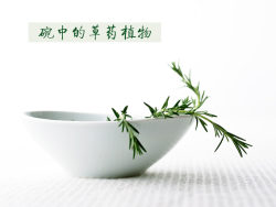 Link toBowl of herbal plants in hd pictures