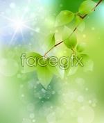 Link toBranch green leaf background psd