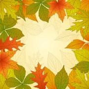 Link toBright autumn leaves vector backgrounds 02