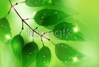 Link toBright green leaves a halo background vector