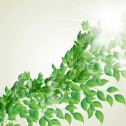 Link toBright green leaves with air bubble vector background 02 free