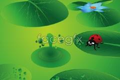 Link tobackground vector ladybug leaves lotus green Bright
