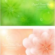 Link toBrilliant flowers background vector 01 free