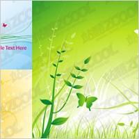 Link toButterfly flower plant