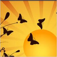 Link toButterfly on sunset