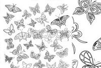 Link toButterfly pencil lines, multiple draft vector