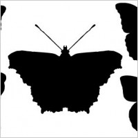 Link toButterfly silhouettes