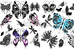 Link toButterfly totems, aesthetic design vector