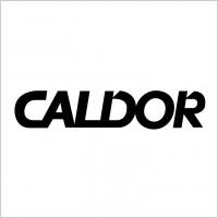 Link toCaldor logo